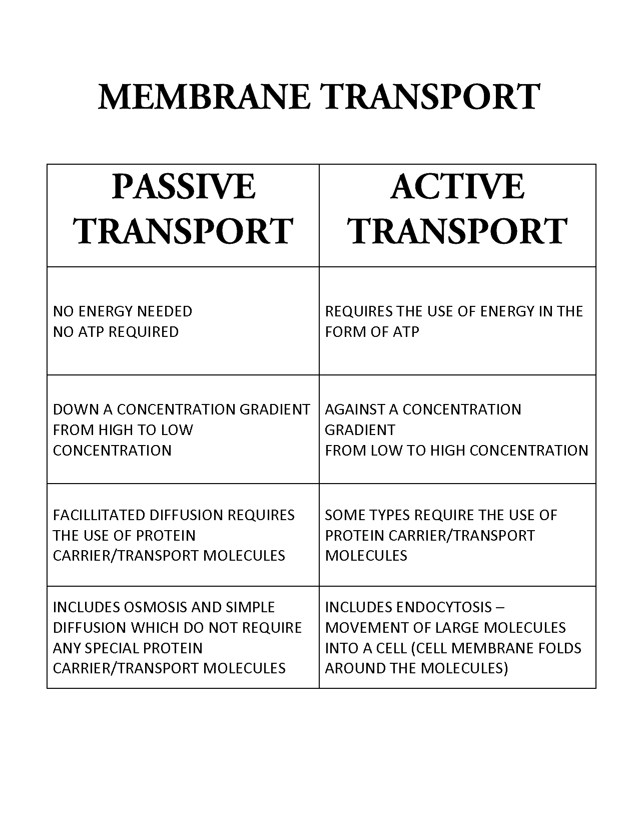 worksheet Passive And Active Transport Worksheet passive transport versus active biology class transport