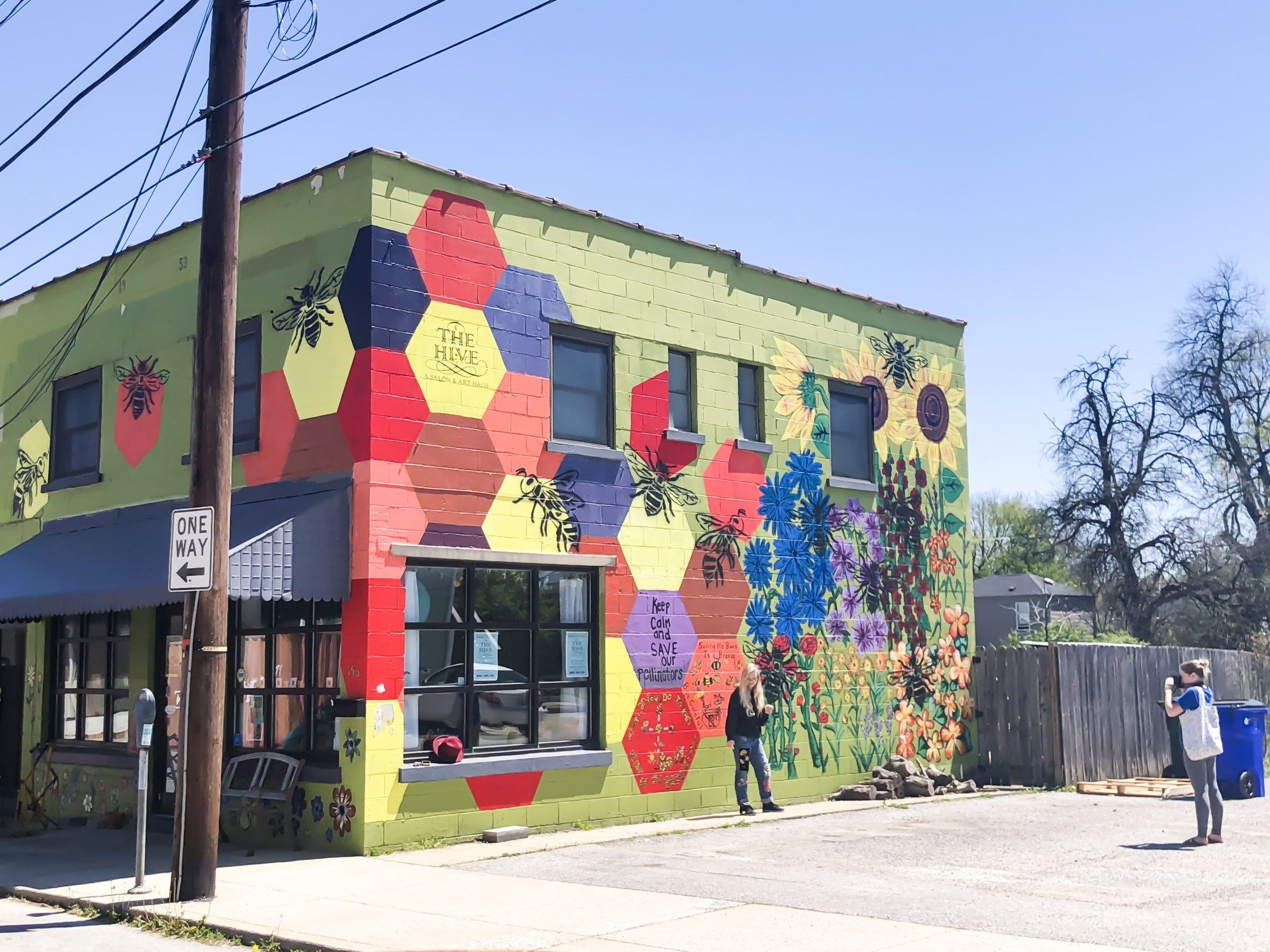 Street Art And Murals Of Lexington Kentucky Volume Iii Street Art Lexington Mural