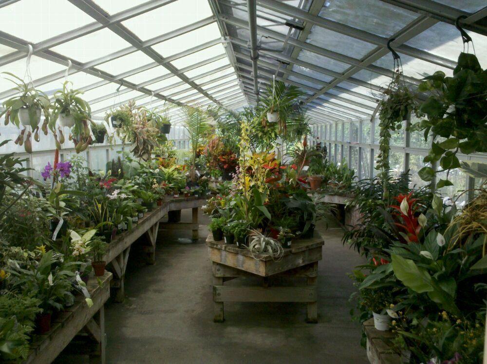Berkeley Horticultural Nursery North Berkeley Berkeley Ca