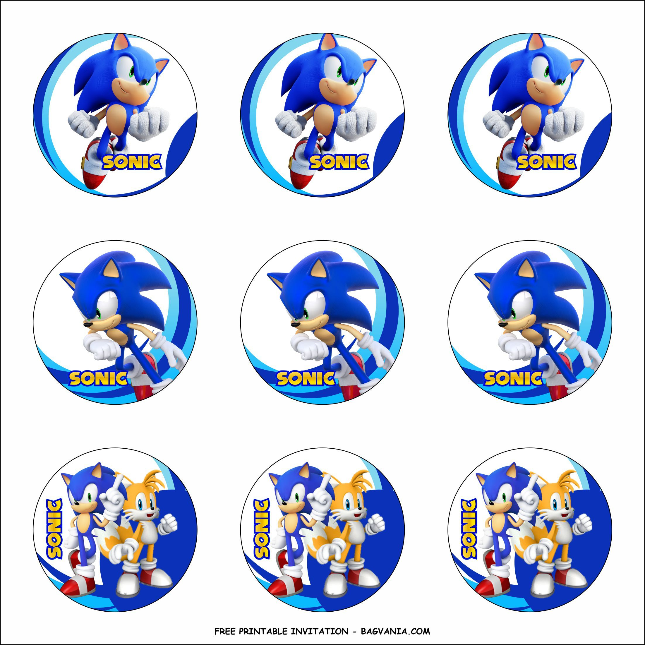 Free Printable Sonic The Hedgehog Birthday Party Kits Template Hedgehog Birthday Sonic Birthday Parties Sonic Birthday