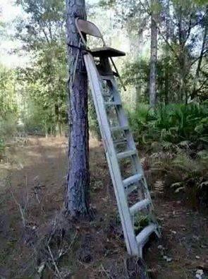Redneck ladder stand hunting pinterest ladder stands for Ladder deer stands