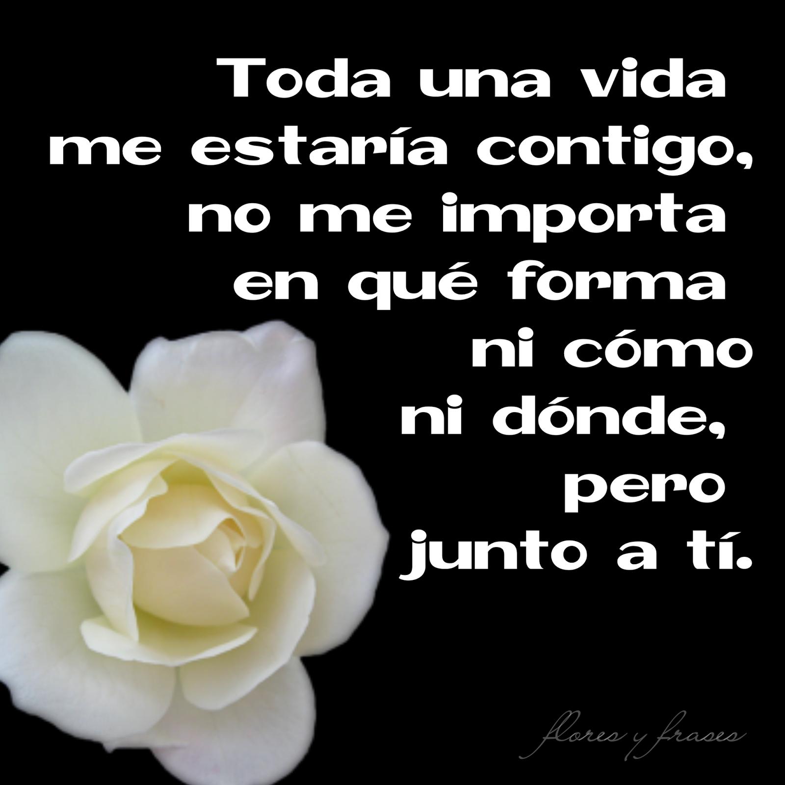 Flores Frases Mensajes Pensamientos Y Poemas Sobre El Amor La