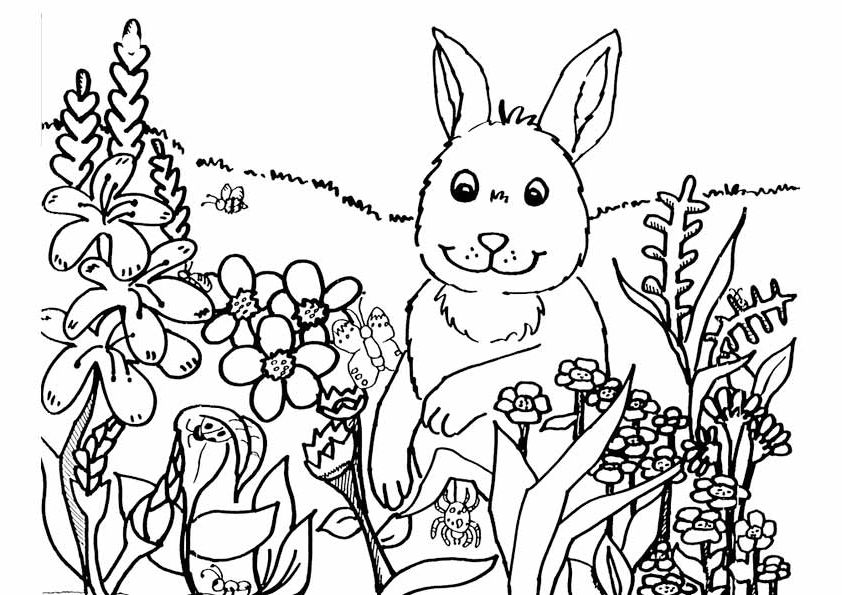 Spring Coloring Pages Best Coloring Pages For Kids Coloriage Spring Printemps