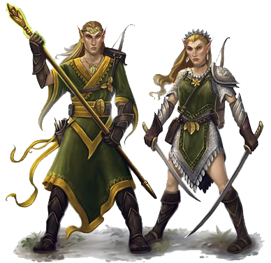 Male Sun Elven Wizard Female Sun Elven Ranger Alderite