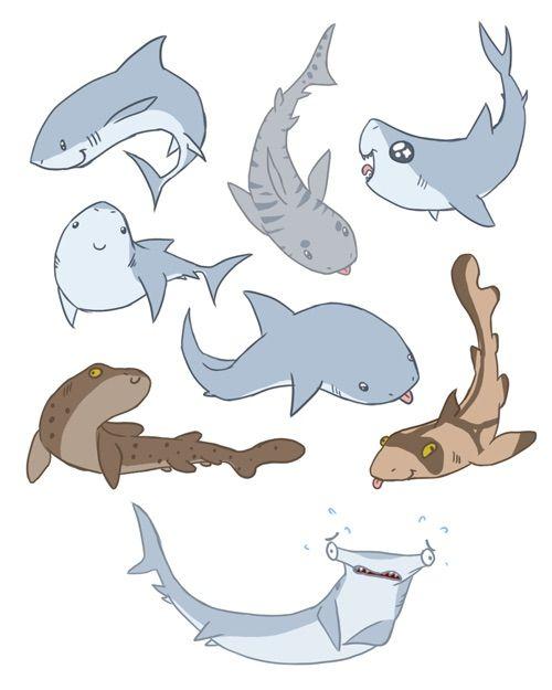 oml they re all so cute cartoon cool shark cute shark drawings