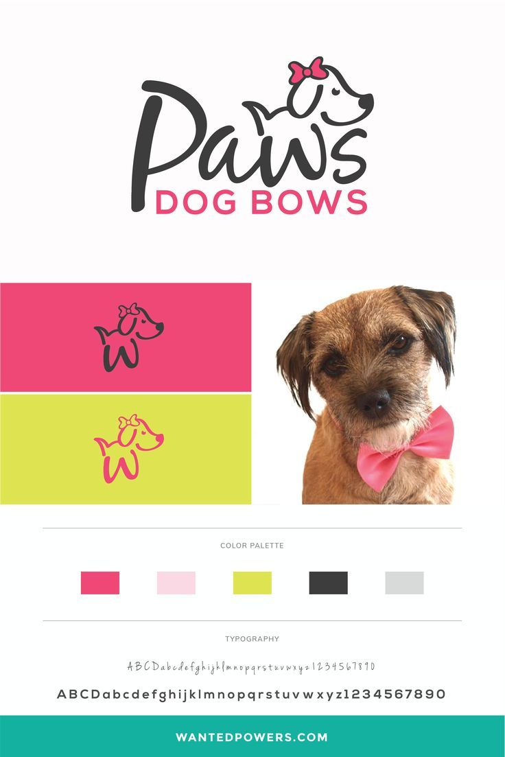 Paws Dog Logo Branding Pet Logo Graphic Design Typography