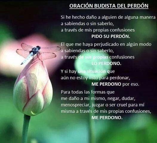Oración Budista Del Perdón Palabras De Sabiduria Oración Budista Oraciones