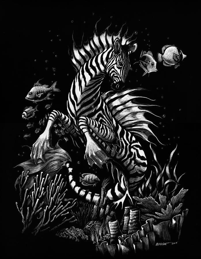 Zebra Hippocampus Fine Art Print by Stanley Morrison