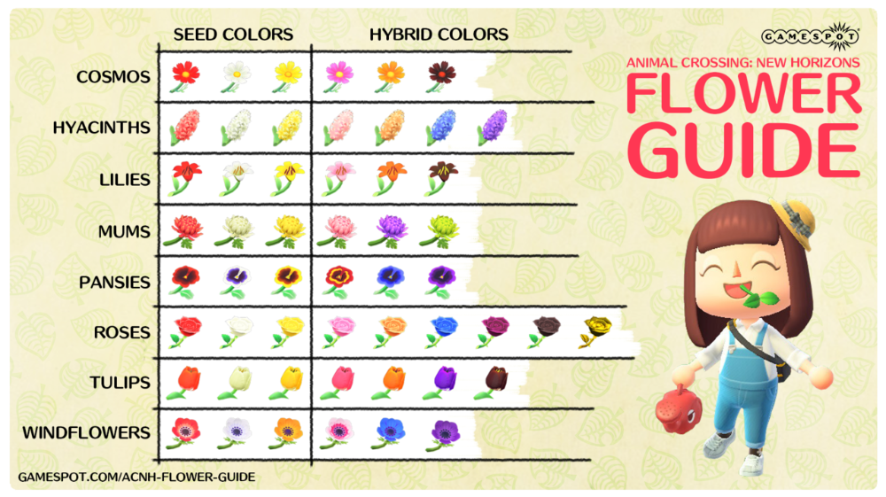 Animal Crossing New Horizons Hybrid Flowers Guide How To Breed Flowers Gamespot In 2020 Animal Crossing Flower Guide Animal Crossing Guide