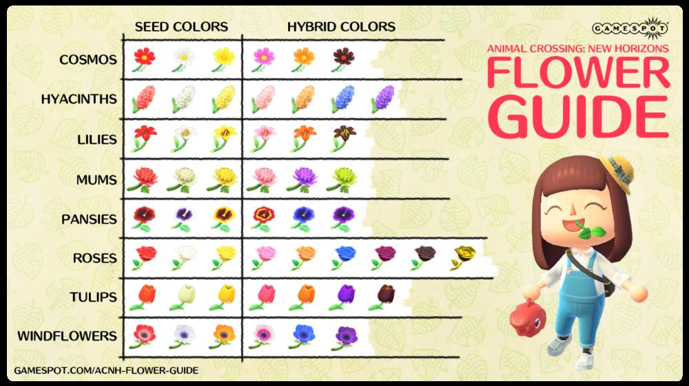 Flower Hybrid Chart Http Www Thonky Com Animal Crossing New Leaf Flowers Hybrids Animal Crossing Flower Guide New Leaf