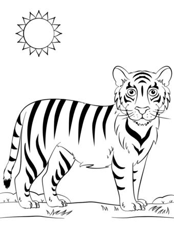 Tiger Ausmalbilder Abc Malvorlagen Tiger Fur Kinder Ausmalen