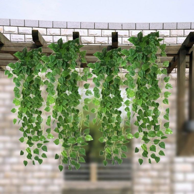pergola con plantas colgantes - Plantas Colgantes Exterior