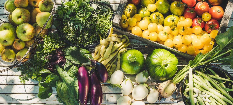 Gemüse in die Muschi von Xania Wet