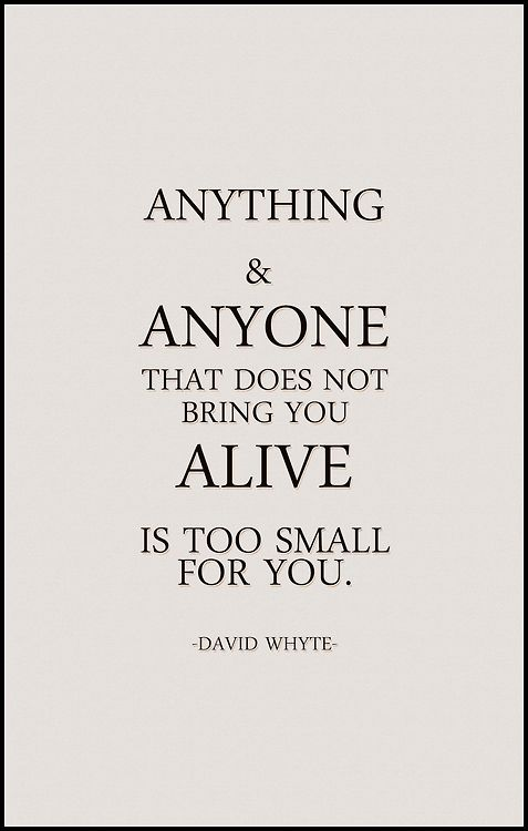 Anything And Anyone That Does Not Bring You Alive Is Too Small For