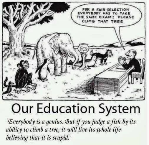 Education System Education System Teacher Humor Education