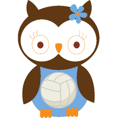 Volleyball Blue Owl