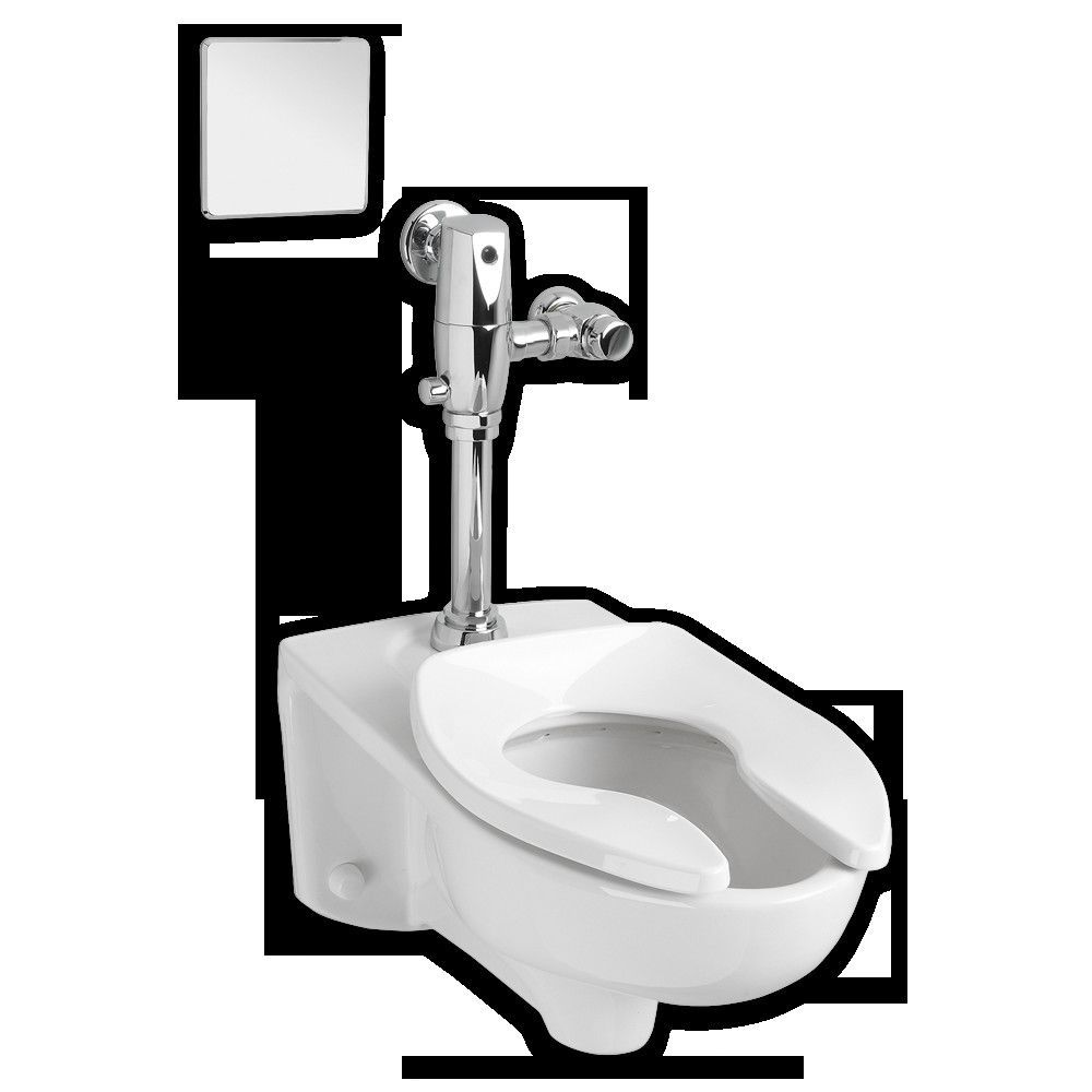 Afwall Dual Flush Elongated Toilet 2 Piece