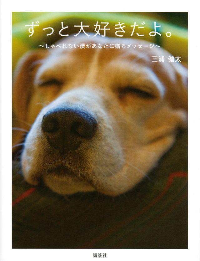 しゃべることのできない犬が家族に対する想いを言葉にした一冊 犬は