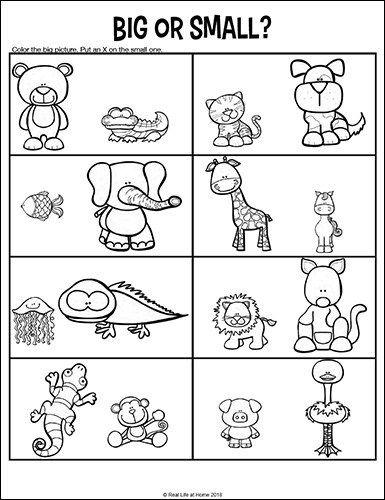 Opposites Worksheets for Kindergarten and Preschool ...