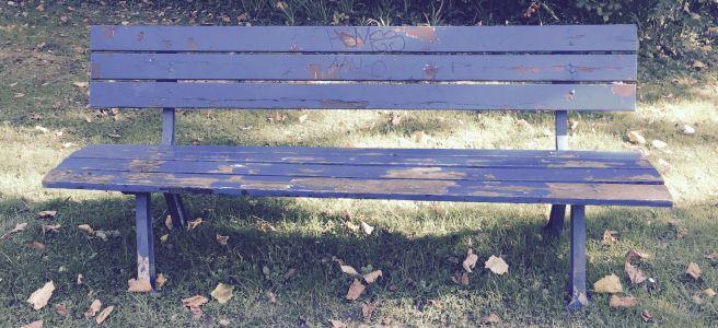 Bank Im Garten Der Melanchton Akademie In Koln Outdoor Furniture Outdoor Decor Outdoor