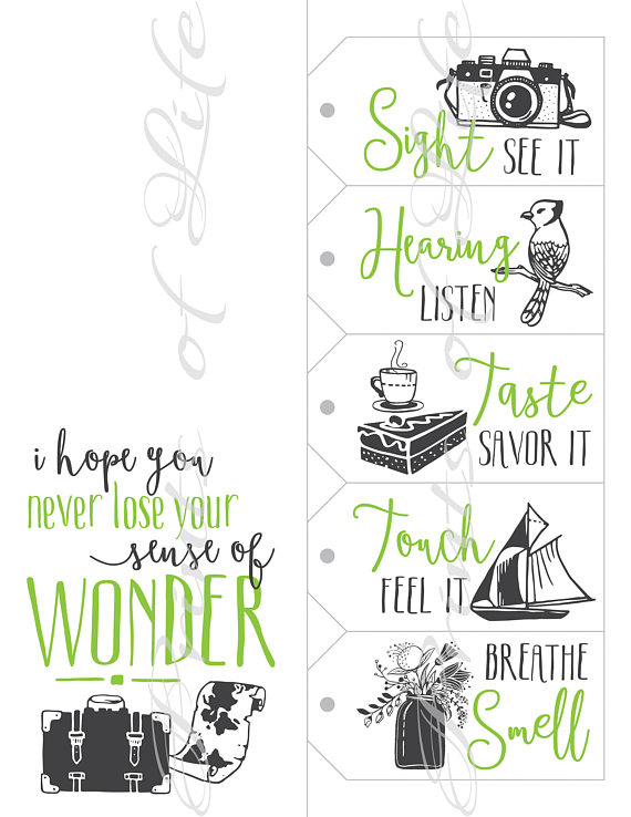 Five Senses Gift Tags & Card. Instant download printable. 5 Sense of wonder print. Christmas gift fo
