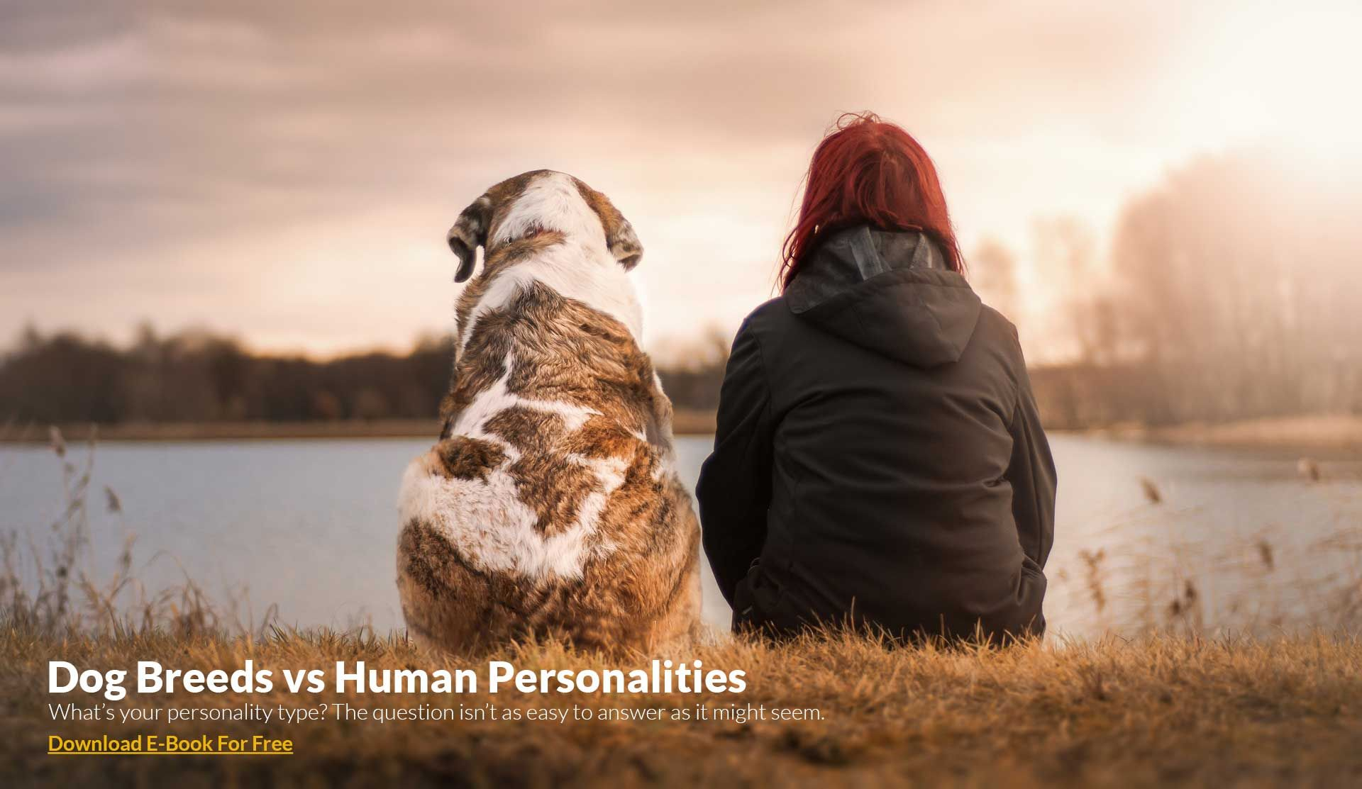 Dog Breeds vs Human Personalities Losing a pet, Pets