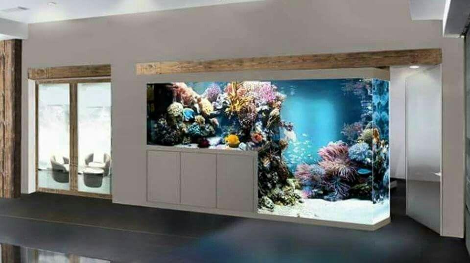 home aquarium ideas the