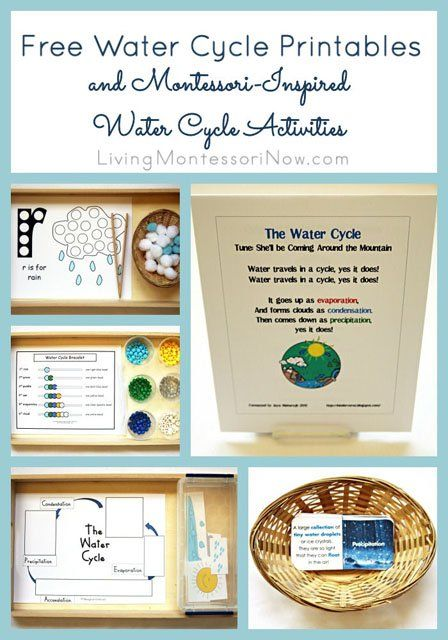Free Water Cycle Printables and Montessori-Inspired Water ...
