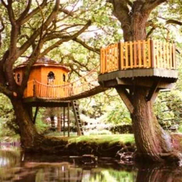 wish I had two big trees in my backyard!  The kids would love this!