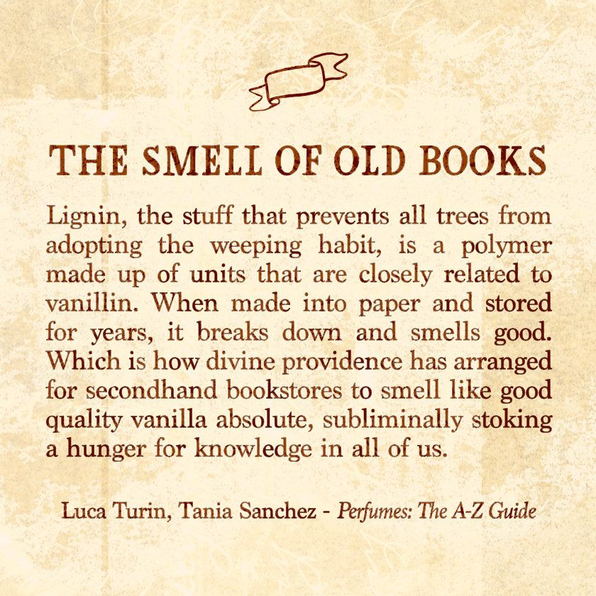 Beautiful Where Does The Smell Of Old Books Come From?
