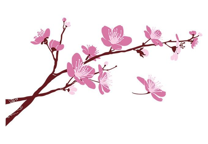 Cherry Blossom Branch Wall Decal Beautiful Floral Vinyl Decor Tree Drawing Cherry Blossom Branch Cherry Blossom Drawing Cherry Blossom Images