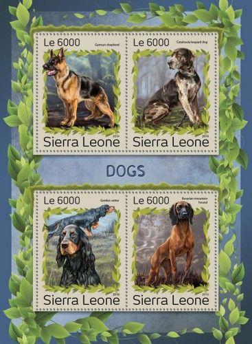 SRL161202a Dogs (German shepherd; Catahoula leopard dog; Gordon setter; Bavarian mountain hound)