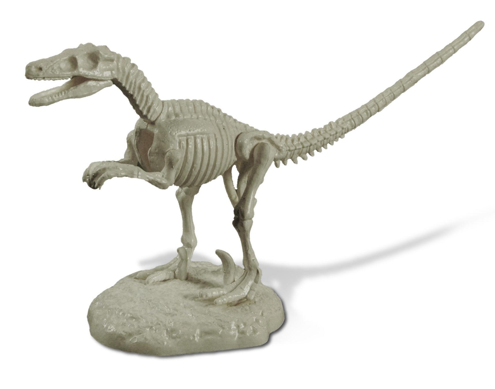 Velociraptor - Jurassix Museum