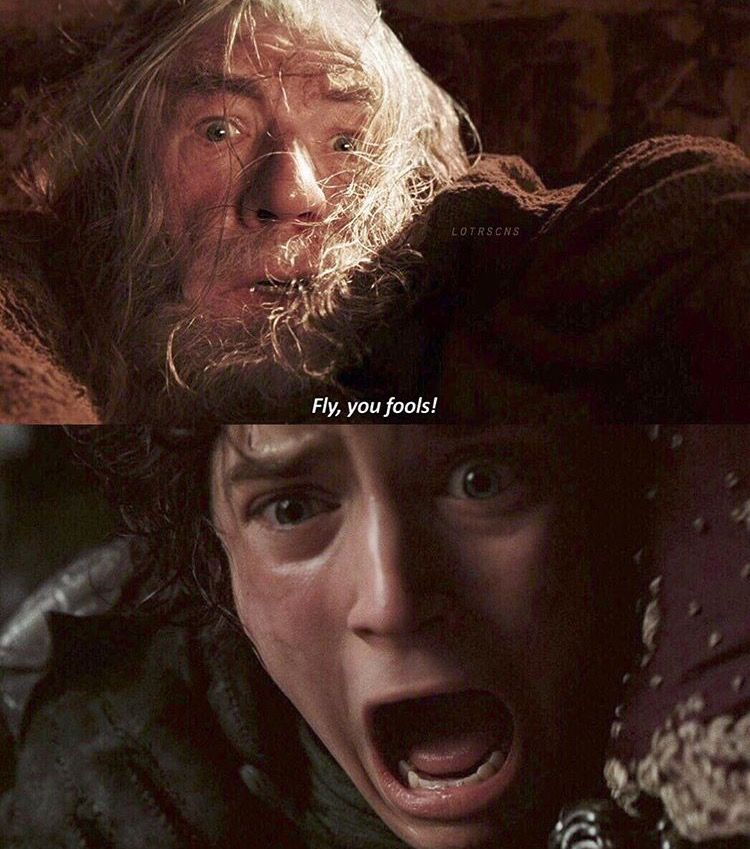 Fly You Fools Lord Of The Rings The Hobbit The Fool