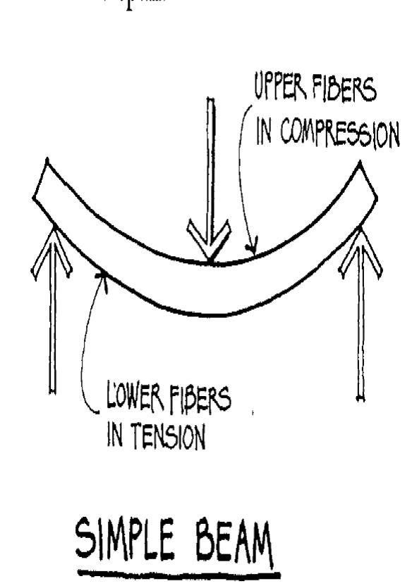 beam diagrams fixed connection