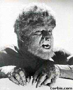 wolfman.jpg (250×310)