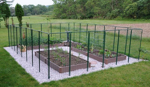 17 Best Ideas About Vegetable Garden Fences On Pinterest Fence