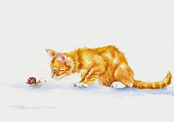 The Inspection. GreyPepperArt. A young marmalade kitten and a snail meet for the first time...