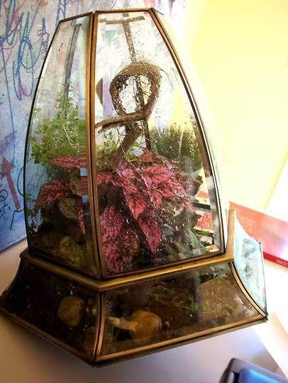Repurposed Light Fixtures As Terrariums Repurposed Lamp Brass Light Fixture Recycled Lamp