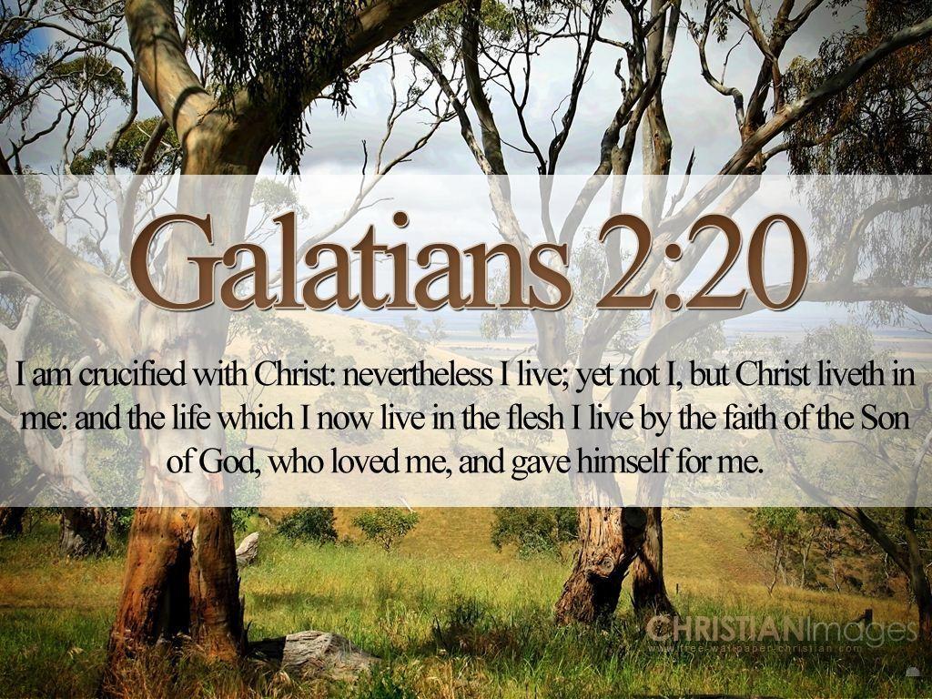 my soul loves jesus bible VERSES   Bible Verses On Love Galatians 2