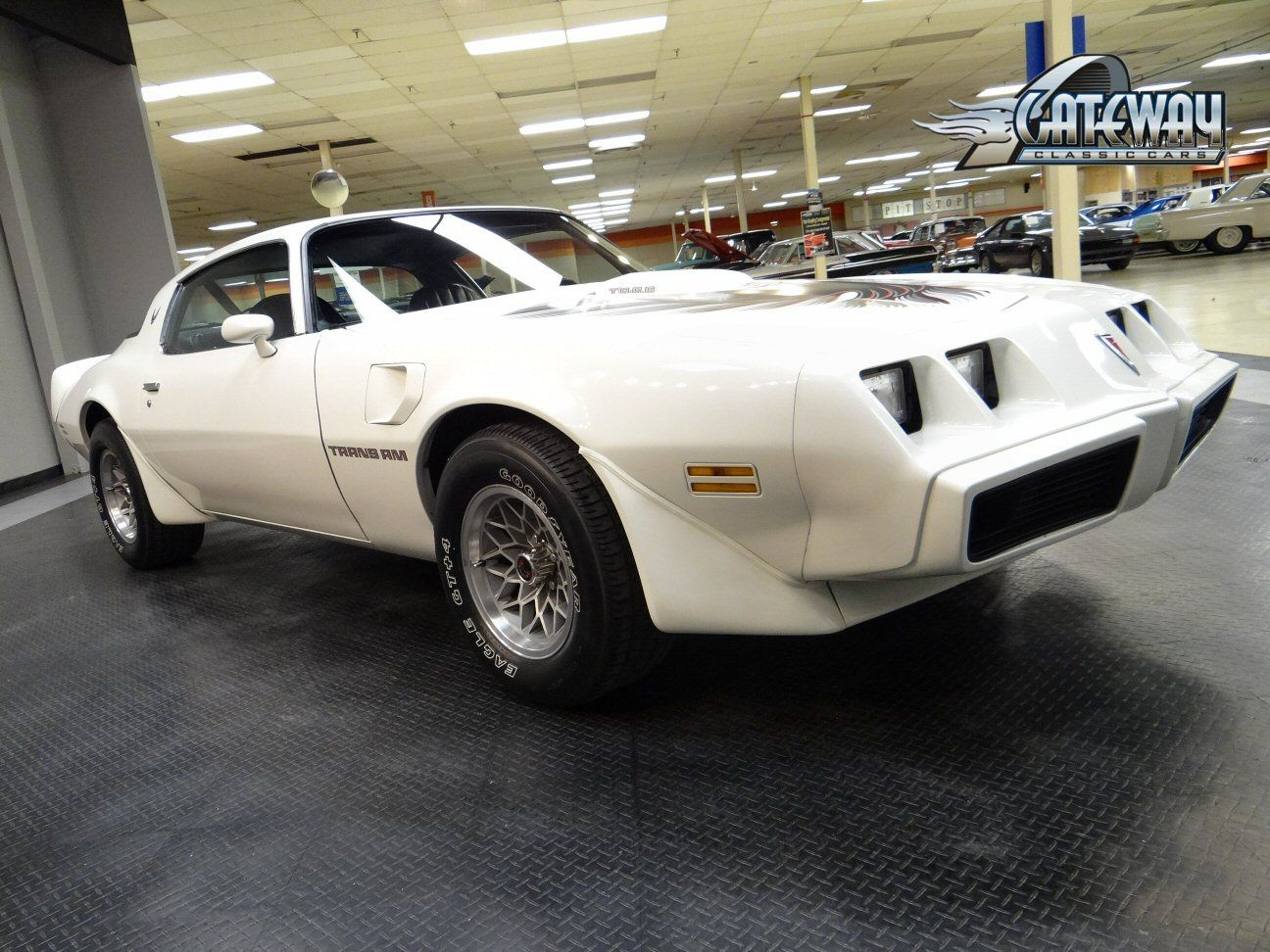 1981 trans am 1981 pontiac trans am