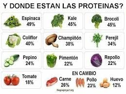 alimentos donde encontramos proteinas