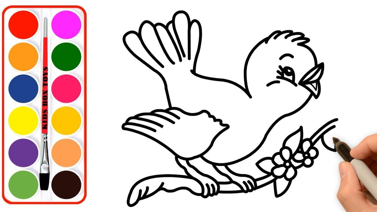 How To Draw Cute Coloring Bird Video For Children Kidsboxtoys Cute Drawings Drawings Bird Gif