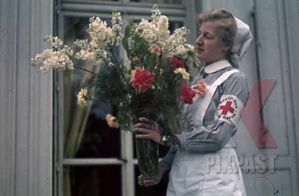 German Red Cross Nurse Drk Costume Flowers Paris France 1940 Hospital