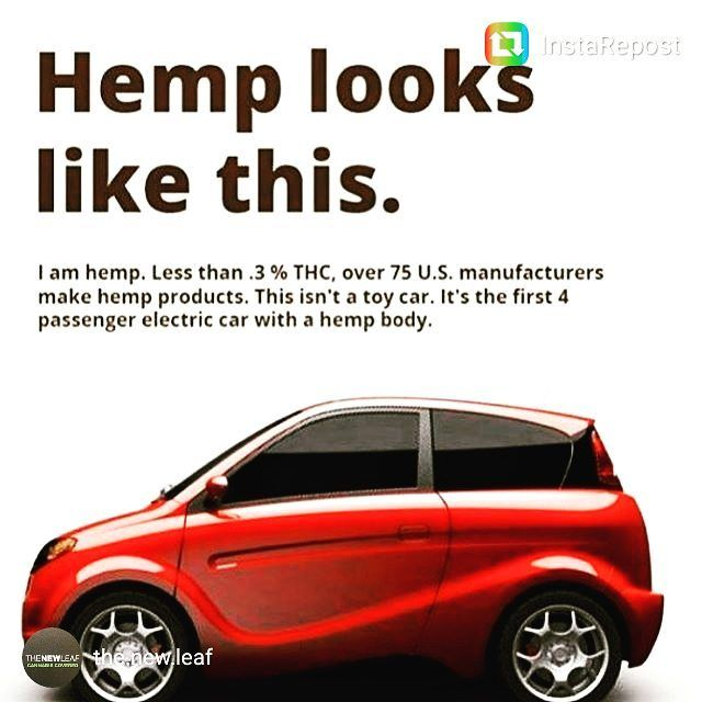 Did YOU know that Canada has created the first 4 passenger electric car made out of biocomposite hemp!? Stronger than steel!! It's called the Kestrel. We want one!! #hempheals #hemp #hempcar #hemptextiles #cbd #hempoil #green #biocomposite #kestrel #electriccar #bethechange #bethetruth