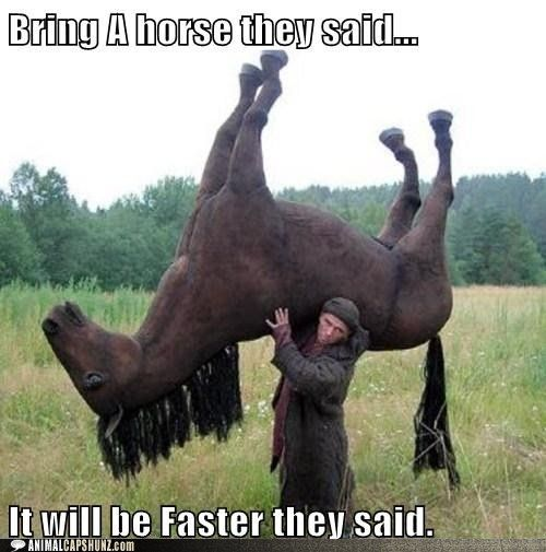 Too Funny Funny Horse Memes Horses Funny Pictures