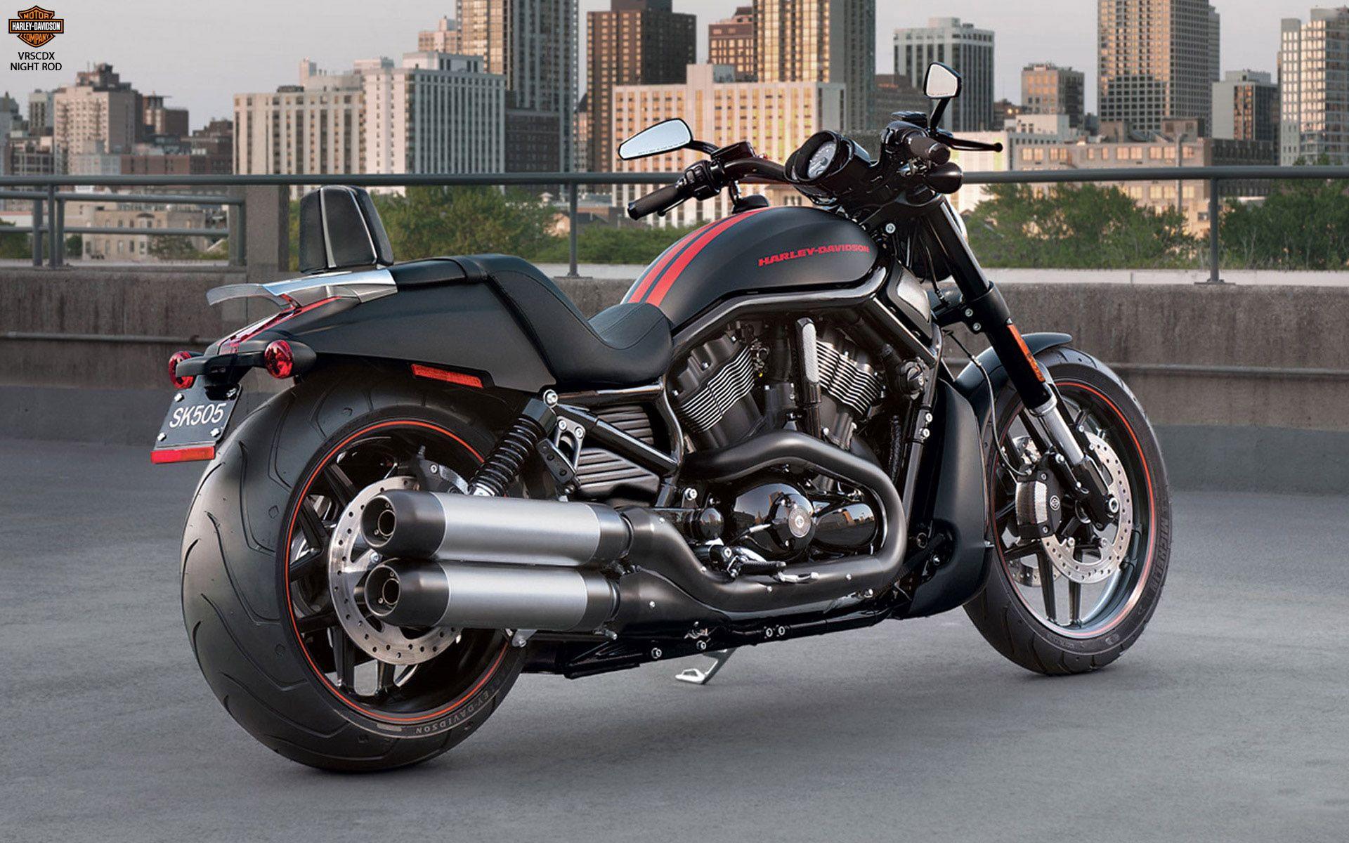Harley Davidson Vrscdx Night Rod Pc Wallpaper Harley
