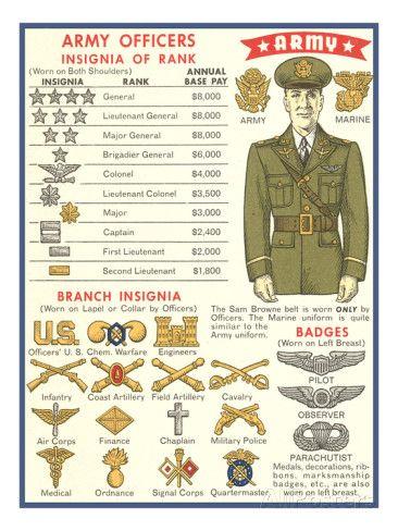 WW II U.S. Army Air Force Officers Branch Insignia US