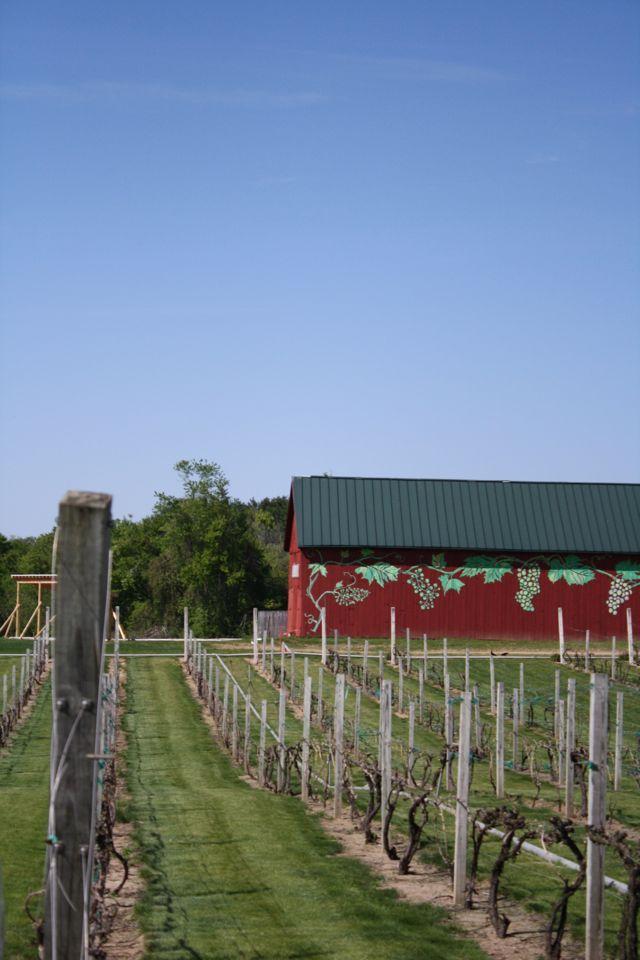 Rosedale Farms in Simsbury