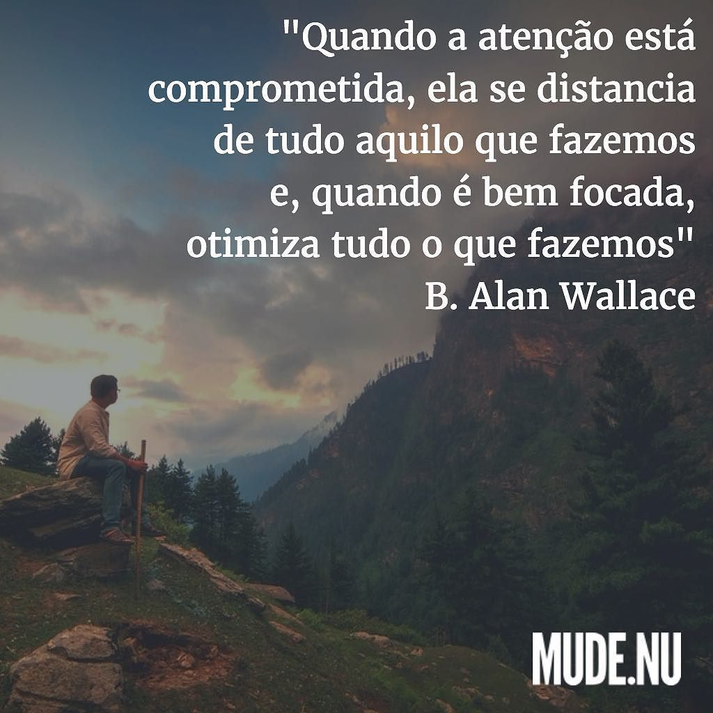 """""""Quando a atenção está comprometida ela se distancia de tudo aquilo que fazemos e quando é bem focada ela otimiza tudo o que fazemos.""""  B. Alan Wallace"""